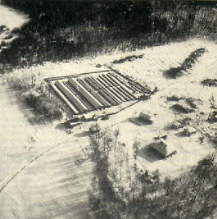 A large mink farm seen from the air.