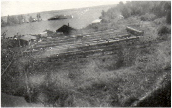 harold viden's mink ranch at murry's point.