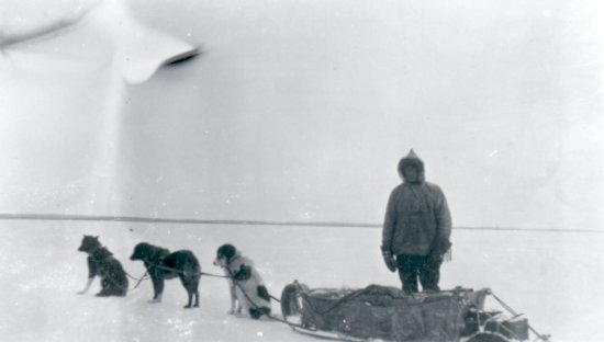 Ed Theriau with dog team