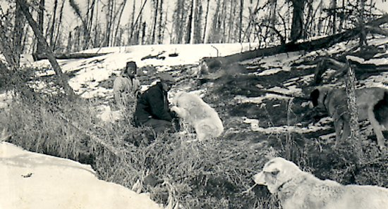 Ed Theriau and Fred Darbyshire with their dogs