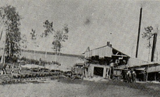 Harry Boyd's sawmill at Stoney Lake.