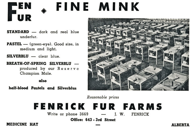 Fenrick Fur Farm Advertisment.