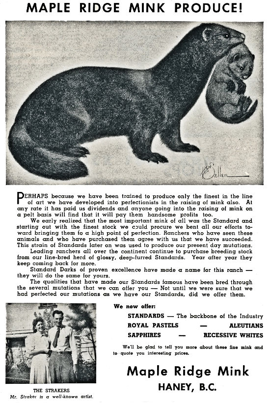 Maple Ridge Mink Advertisment.