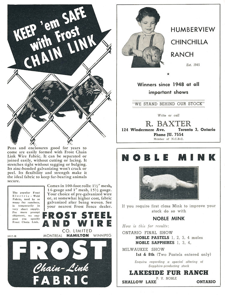 Frost Chain Link Fabric Advertisment.