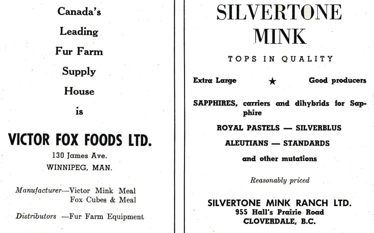 Victor Fox Foods Advertisment.